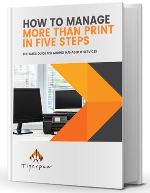 Manage More Than Print in 5 Steps eBook BOOK COVER smaller margins